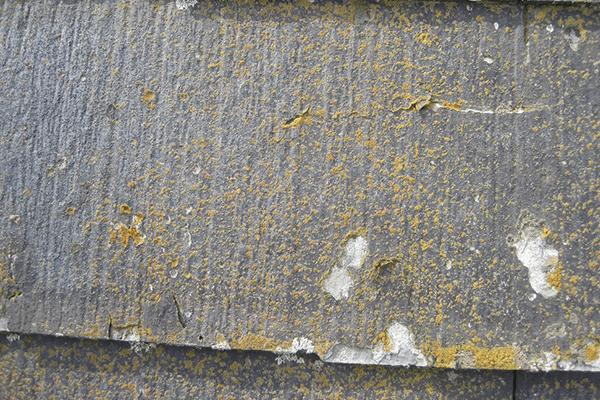 屋根の状況により、塗る以外の工程が重要です。